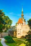 Torres medievais - parte de velho a parede da cidade Tallinn, Estónia Fotografia de Stock
