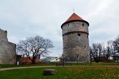 Torres medievales de Tallinn vieja Fotos de archivo