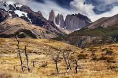 torres patagonia Чили del paine Стоковые Фото