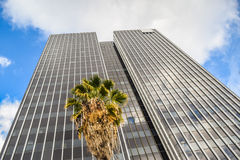 Torres y apartamentos céntricos de Los Ángeles en un día de invierno claro Foto de archivo
