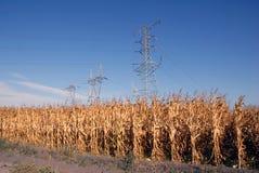 Torres y maíz eléctricos Imagen de archivo