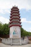 Torretta cinese del tempiale Fotografia Stock
