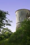 Torretta del castello Fotografia Stock