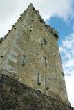 Torretta del castello a Killarney Fotografia Stock