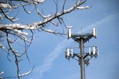 Torretta del telefono delle cellule incorniciata da Snowy Branch Fotografia Stock