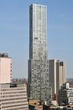 Torretta di Beekman da Frank Gehry Fotografia Stock Libera da Diritti