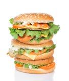 Torretta differente degli hamburger fotografie stock libere da diritti