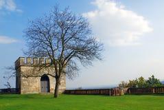 Torretta ed albero di pietra a Schloss Seggau - Liebnitz Fotografia Stock