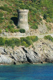 Torretta Genoese in Corsica Fotografia Stock