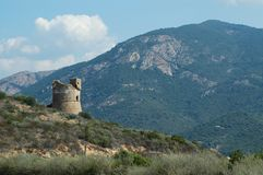 Torretta Genoese in Corsica Fotografia Stock Libera da Diritti
