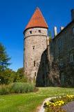 Torretta medioevale. Tallinn, Estonia Fotografia Stock