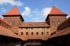 Torrette del castello Immagine Stock