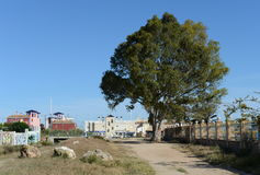 Torrevieja Is A Mediterranean City With Privileged Location And The Unique Climatic Conditions