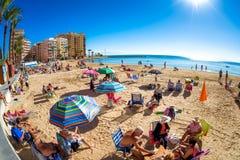 TORREVIEJA SPANIEN - NOVEMBER 17, 2017: Kustlinje av Playa del C Royaltyfria Bilder