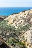 Torrey Pine状态储备和海滩在圣迭戈,加利福尼亚 库存照片