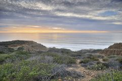Torrey Pine State Reserve Park Royalty Free Stock Photos
