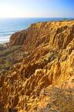 Torrey Pines. This photo is taken in Torrey Pines - California Royalty Free Stock Photos