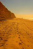 Torrey Pines Beach - San Diego Royalty Free Stock Image