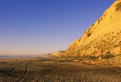 Torrey Pines Beach (Southern California) Stock Photography