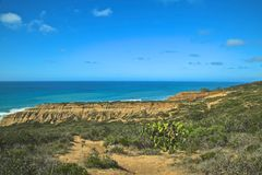 Torrey Pines cliffs Royalty Free Stock Photography