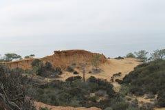 Torrey Pines-Nationalpark Stockfoto