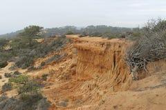 Torrey Pines-Nationalpark Stockfotografie