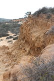 Torrey Pines-Nationalpark Lizenzfreie Stockfotos