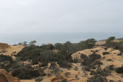 Torrey Pines-Nationalpark Lizenzfreies Stockbild