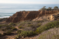 Torrey Pines State Natural Reserve Foto de archivo