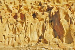 Torrey Pines State Natural Reserve and Beach Stock Photos