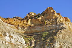 Torrey Pines State Natural Reserve and Beach Royalty Free Stock Images