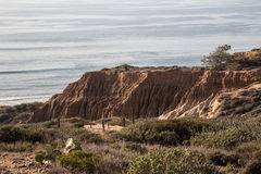 Torrey Pines State Natural Reserve Stock Photos