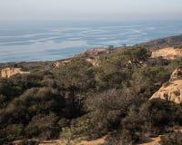 Torrey Pines State Natural Reserve de Califórnia imagem de stock