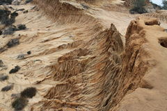 Torrey Pines State Park. Eroded Rock Stock Photo