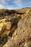 Torrey Pines State Park EUA imagem de stock royalty free