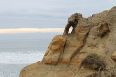 Torrey Pines State Park Stock Photography