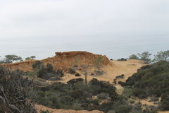 Torrey Pines State Park Stock Photo