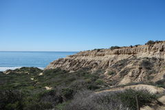 Torrey Pines State Reserve Royalty Free Stock Image