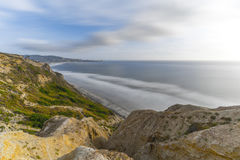 Torrey sosny, San Diego plaża, Kalifornia Fotografia Royalty Free