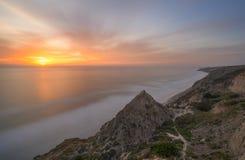Torrey sosny, San Diego plaża, Kalifornia Obrazy Stock
