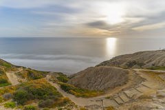 Torrey sosny, San Diego plaża, Kalifornia zdjęcie royalty free