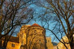 Torri di guardia nella vecchia città di Tallinn Fotografia Stock