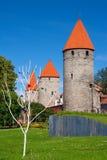 Torri di Tallinn. L'Estonia fotografia stock