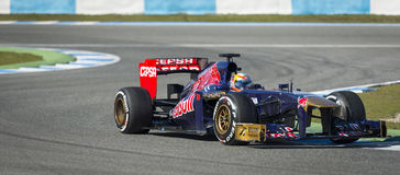 Torro Rosso Royalty Free Stock Photo