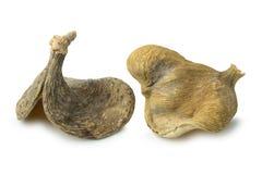Torrt exotiskt mandelnötskal på vit arkivbild
