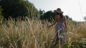 Torrt gräs för kvinnahandlaghöjd i fältet lager videofilmer
