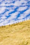 Torrt gräs täckte kullar i Joseph Grant County Park, San Jose, Kalifornien fotografering för bildbyråer