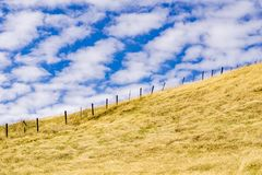 Torrt gräs täckte kullar i Joseph Grant County Park, San Jose, Kalifornien arkivbild