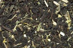 Torrt grönt te med örter Fotografering för Bildbyråer