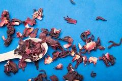 Torrt hibiskuste som är rikt i antioxidants på en blå bakgrund royaltyfri bild